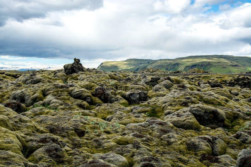 Campo de lava coberto com o musgo verde, Islândia foto de stock