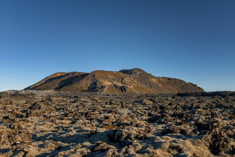 Campo de lava de Islândia no por do sol imagem de stock
