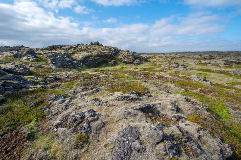 Campo de lava, península de Reykjanes fotos de archivo