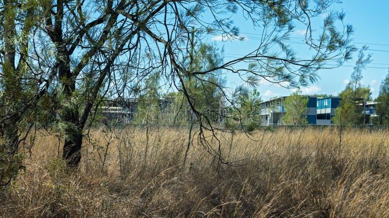 Campo de los mineros de carbón en Australia imagen de archivo libre de regalías