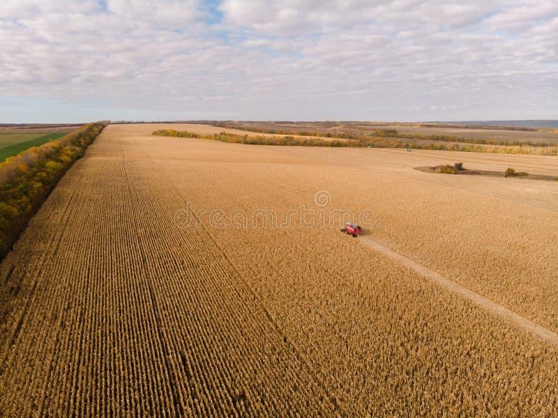 Campo de maíz que cosecha el tiroteo del otoño del aire imágenes de archivo libres de regalías