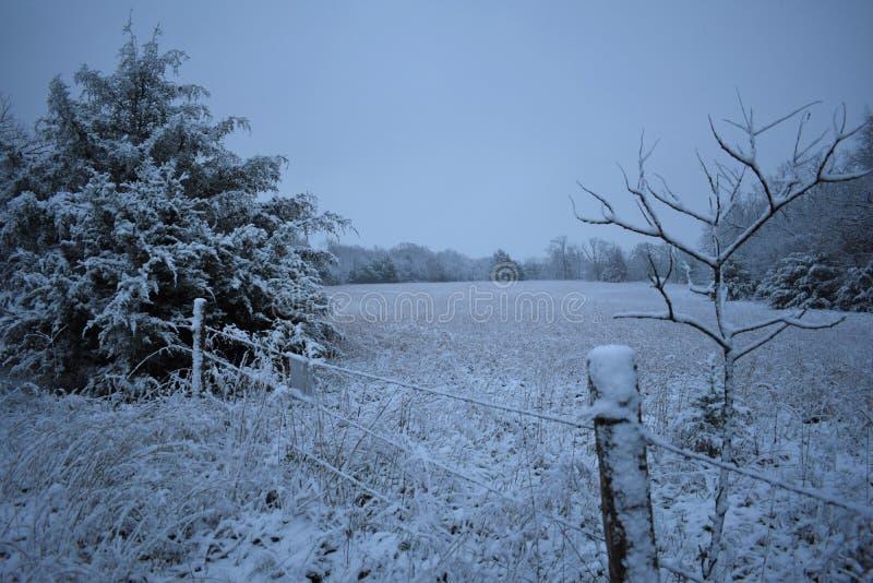 Campo de neve azul foto de stock
