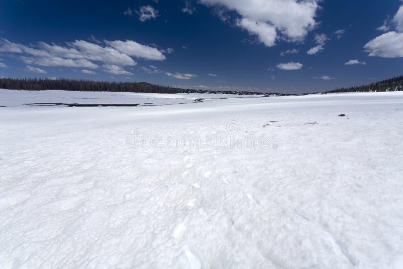 Campo de nieve fotos de archivo libres de regalías