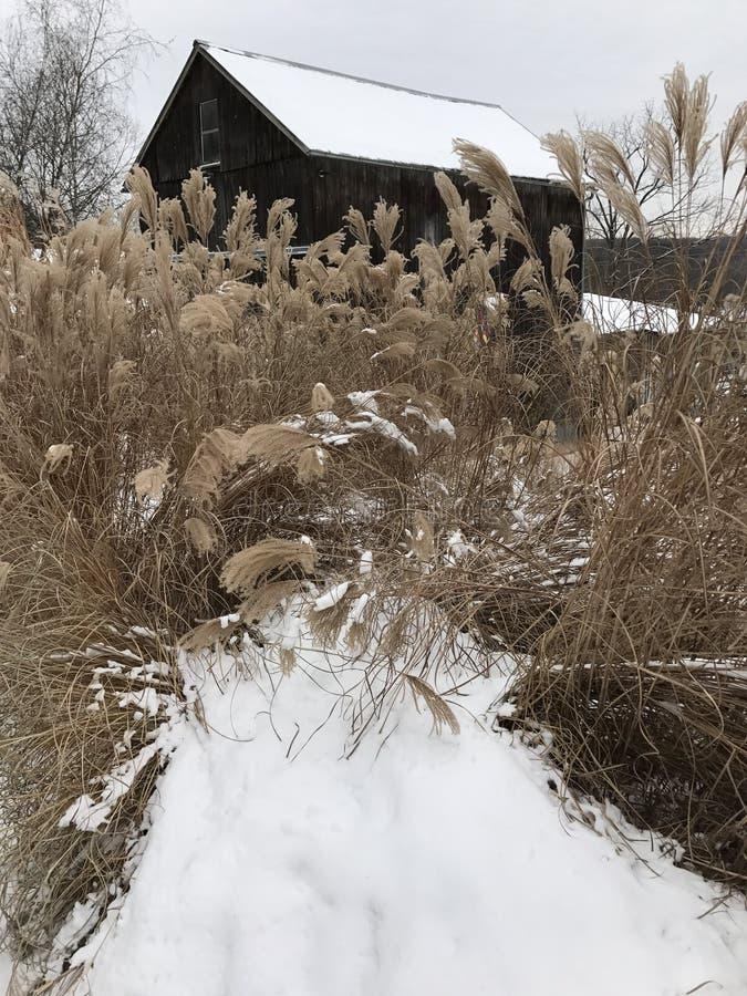Campo de nieve y granero, Ohio fotografía de archivo libre de regalías