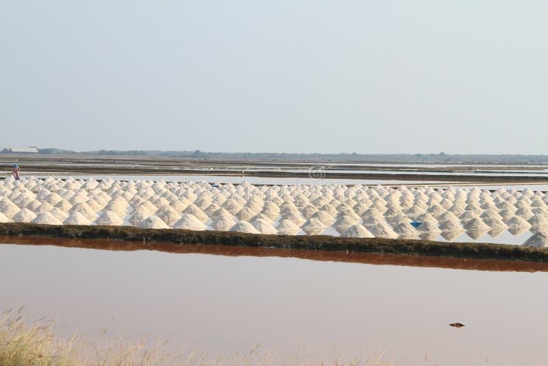 Campo de sal em Samut Sakhon, Tailândia foto de stock