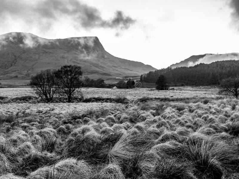 Campo de Snowdonian com névoa do rolamento - Gales fotografia de stock
