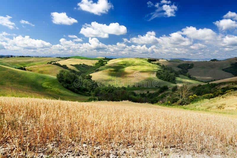 Campo de Toscana imagen de archivo libre de regalías