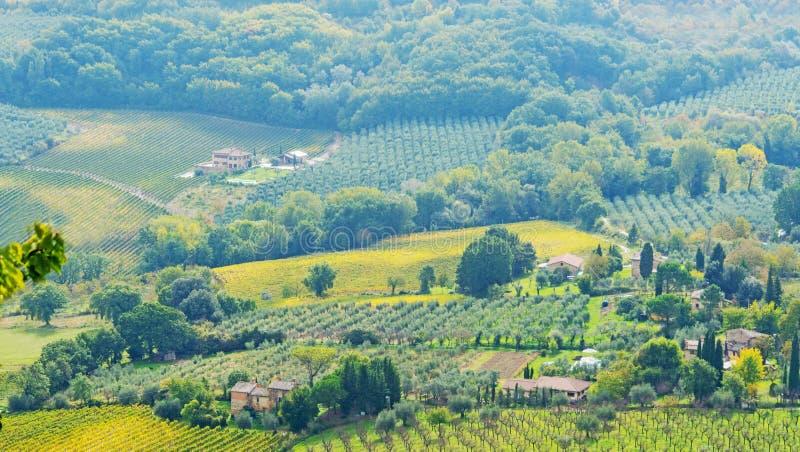 Campo de Toscana en un día soleado imagenes de archivo