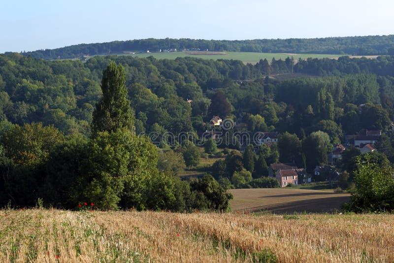 Campo de trigo en el parque de naturaleza regional francés de Vexin foto de archivo libre de regalías
