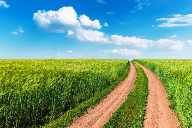 Campo de trigo, estrada de enrolamento e céu azul com nuvens imagens de stock royalty free
