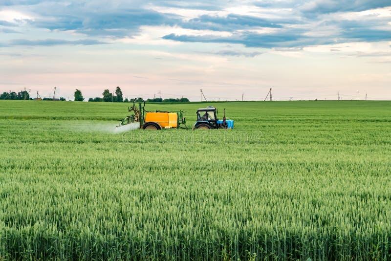 Campo de trigo de pulverização do fazendeiro com o pulverizador do trator na estação de mola foto de stock royalty free
