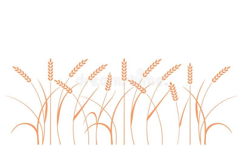 Campo de trigo Silhuetas do centeio ilustração do vetor