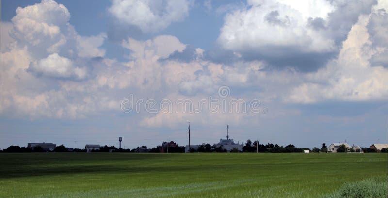 Campo de trigo verde y panorama del cielo azul fotos de archivo