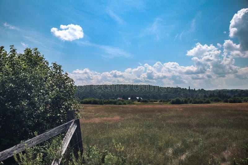 Campo degli agricoltori con i cieli blu profondi immagini stock libere da diritti