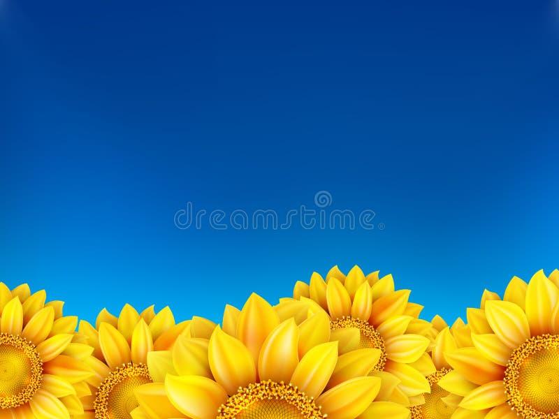 Campo dei girasoli e del cielo blu ENV 10 illustrazione vettoriale