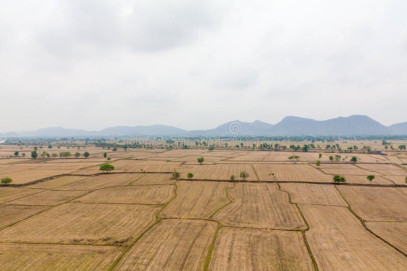 Campo del arroz del paisaje en el campo Kanchanaburi Tailandia imagenes de archivo
