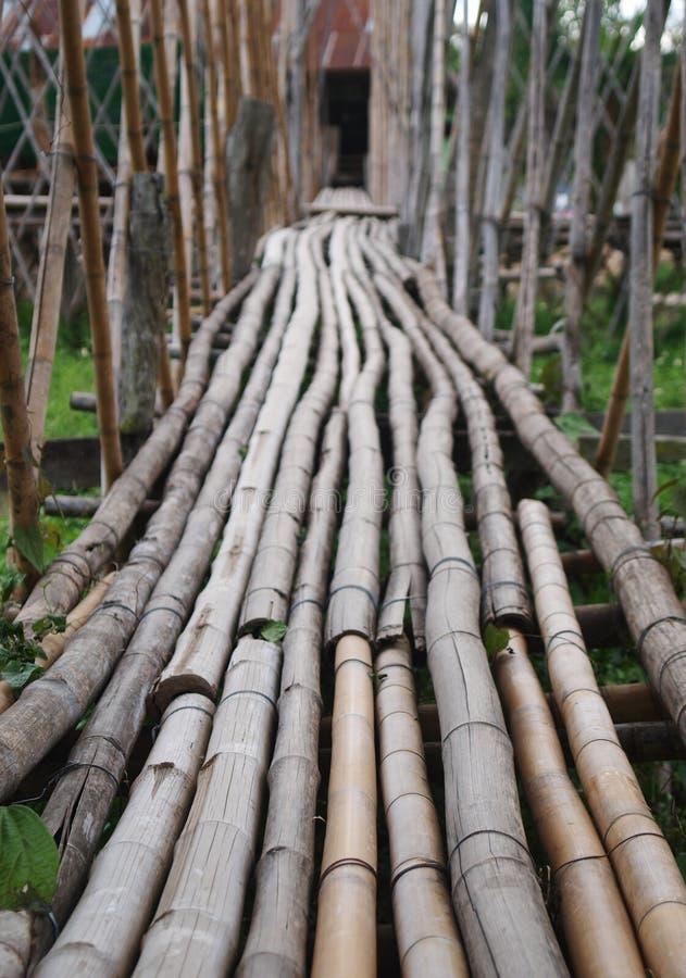 Campo del arroz del puente de bambú del camino que cruza en un lugar turístico del destino en TAILANDIA septentrional fotos de archivo