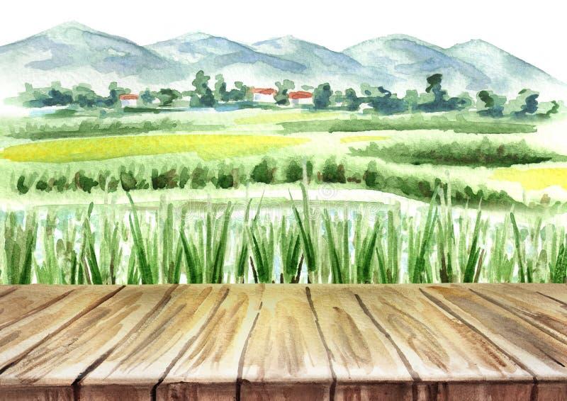 Campo del arroz y fondo vacío de la tabla Ejemplo dibujado mano de la acuarela stock de ilustración
