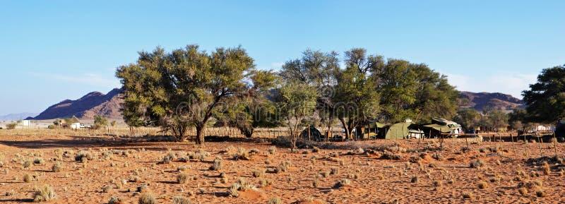 Campo del deserto in Namib immagini stock