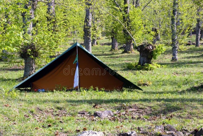 Campo del explorador foto de archivo libre de regalías
