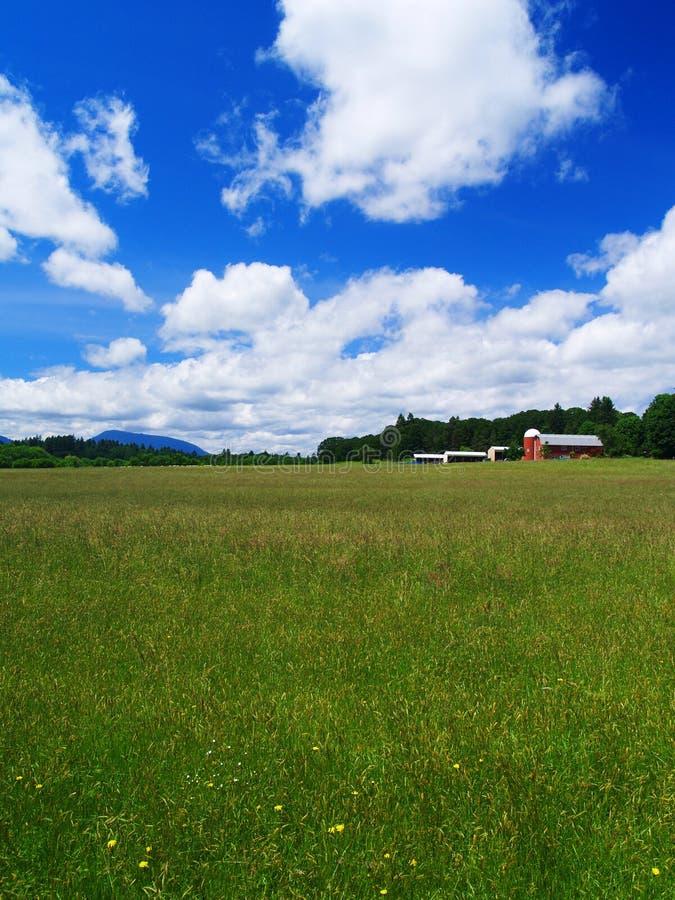 Campo del granjero imagenes de archivo