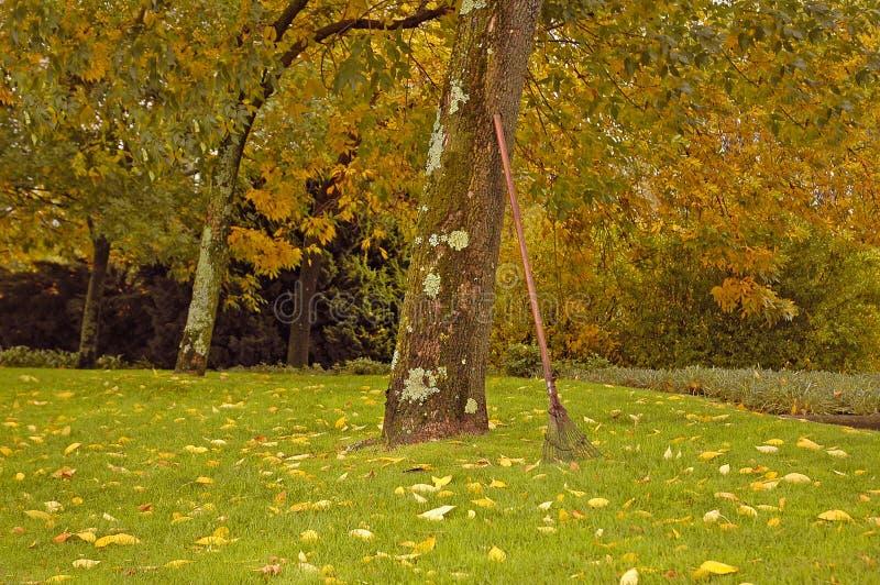 Campo del otoño imágenes de archivo libres de regalías