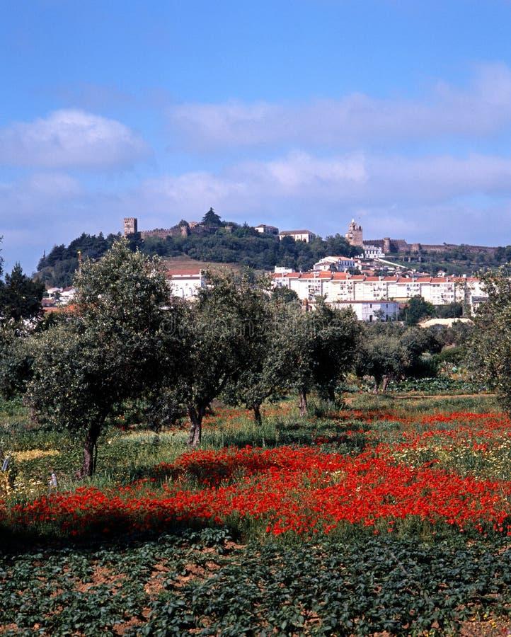 Campo del papavero e città bianca, Portel, Portogallo. fotografia stock libera da diritti