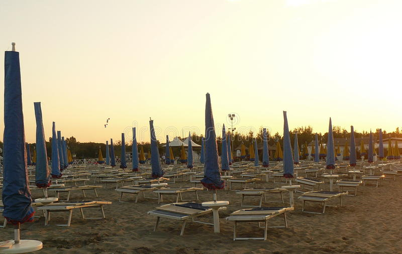 Campo del parasole fotografie stock libere da diritti