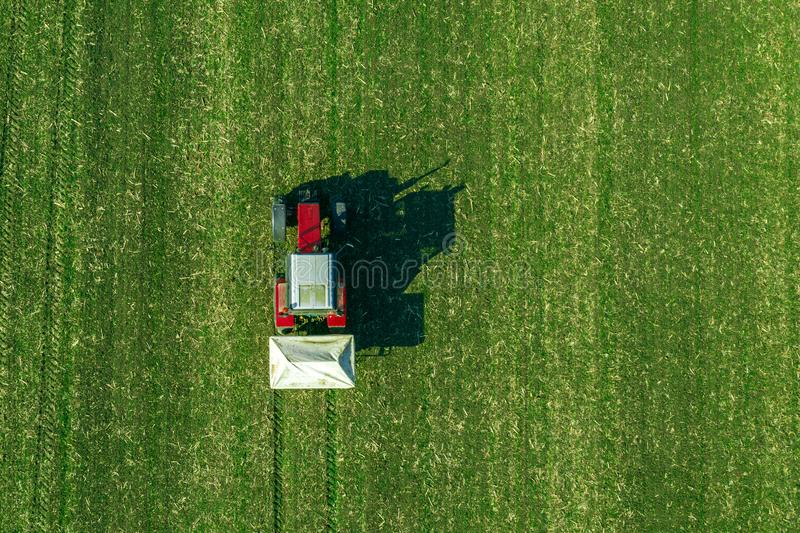 Campo del raccolto del grano di fertilizzazione del trattore agricolo con NPK immagine stock libera da diritti