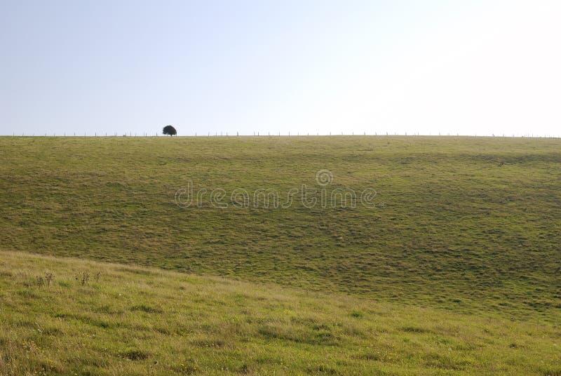 Campo del sur de las llanuras cerca de Worthing. Inglaterra imagen de archivo libre de regalías
