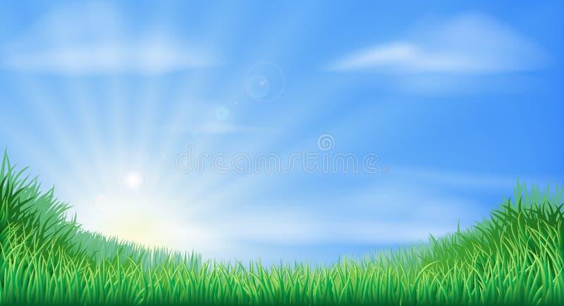 Campo della campagna e fondo di aumento del sole illustrazione vettoriale