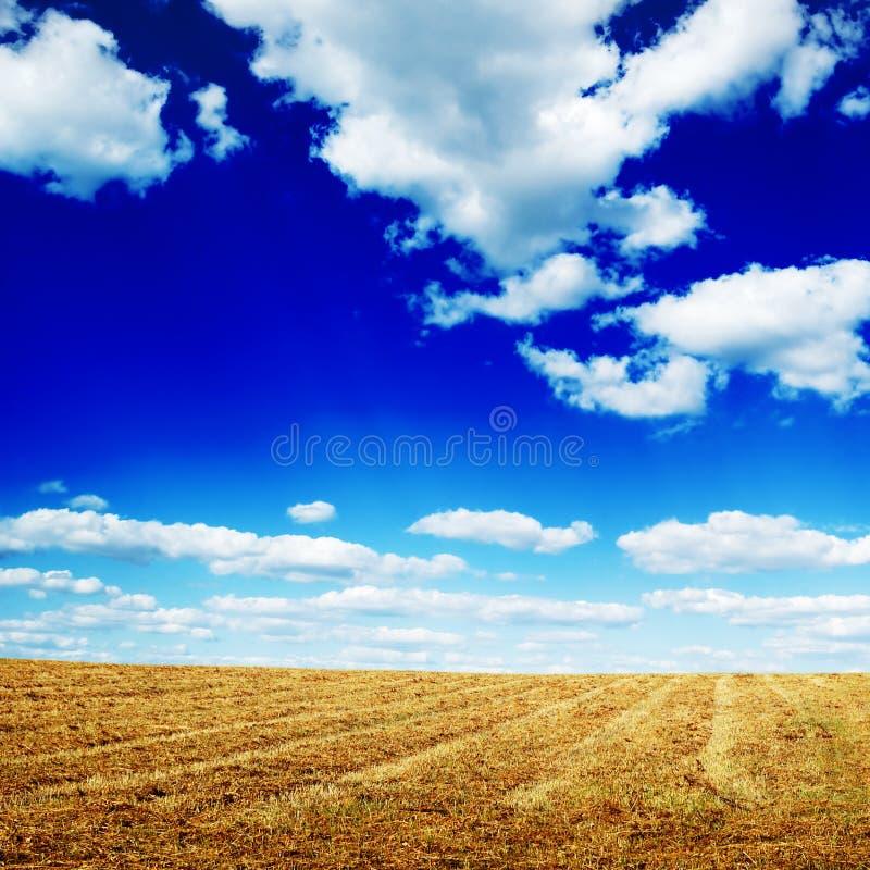 campo di autunno fotografie stock libere da diritti