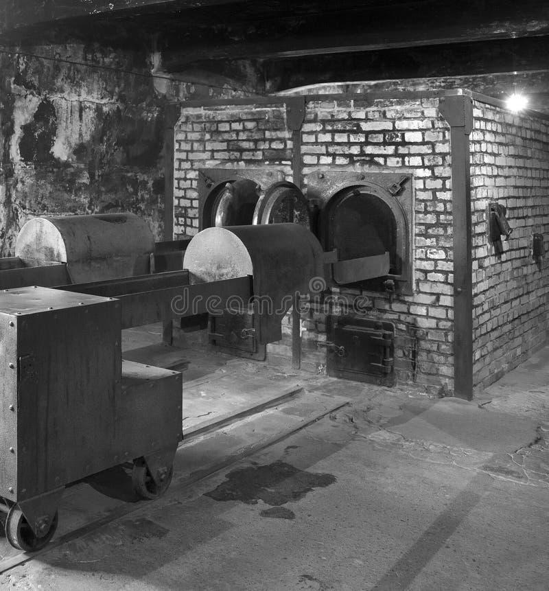 Campo di concentramento nazista di Auschwitz - Polonia fotografia stock libera da diritti