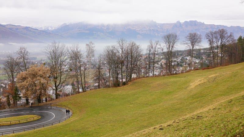 Campo di erba del Liechtenstein fotografia stock libera da diritti
