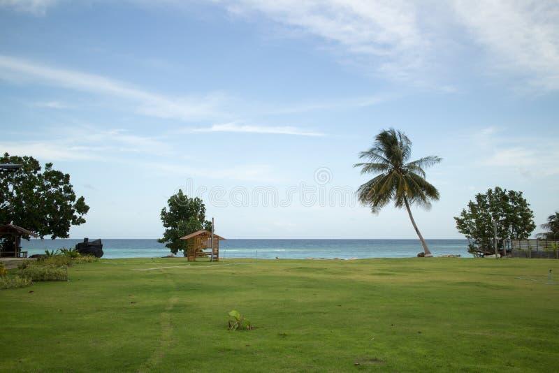Campo di erba e del mare con il cielo molle fotografia stock libera da diritti
