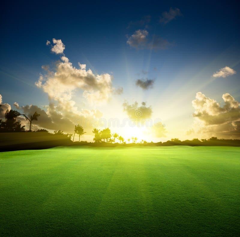 Campo di erba e del tramonto fotografia stock