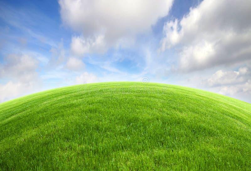 Campo di erba verde con cielo blu immagini stock libere da diritti