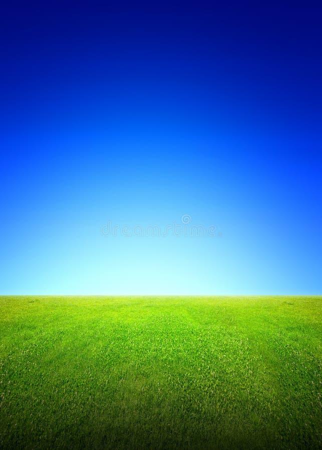Campo di erba verde e del cielo fotografia stock