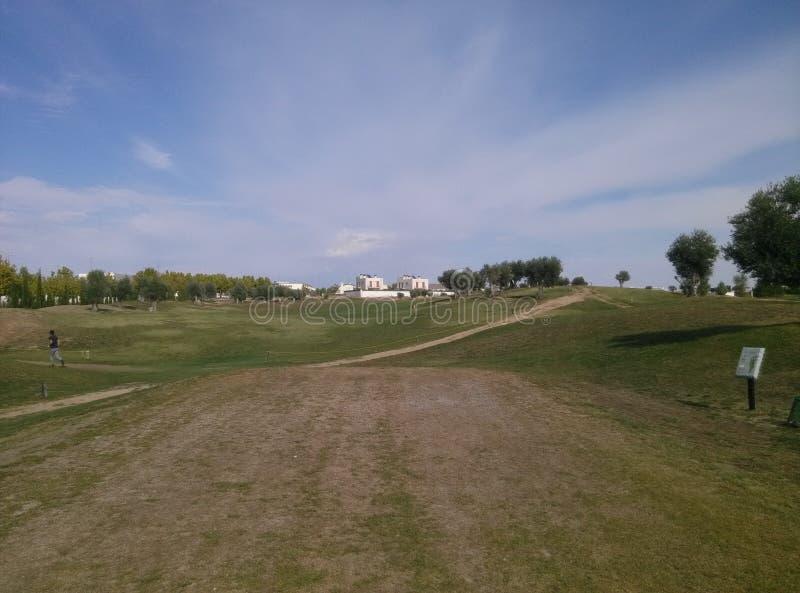 Campo di golf immagine stock