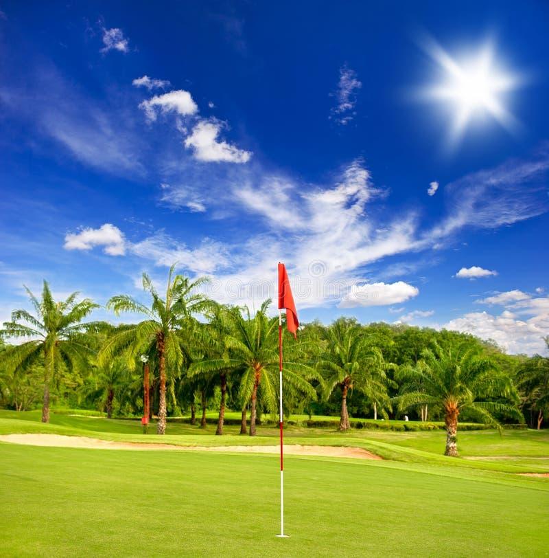 Campo di golf con le palme sopra cielo blu fotografia stock libera da diritti
