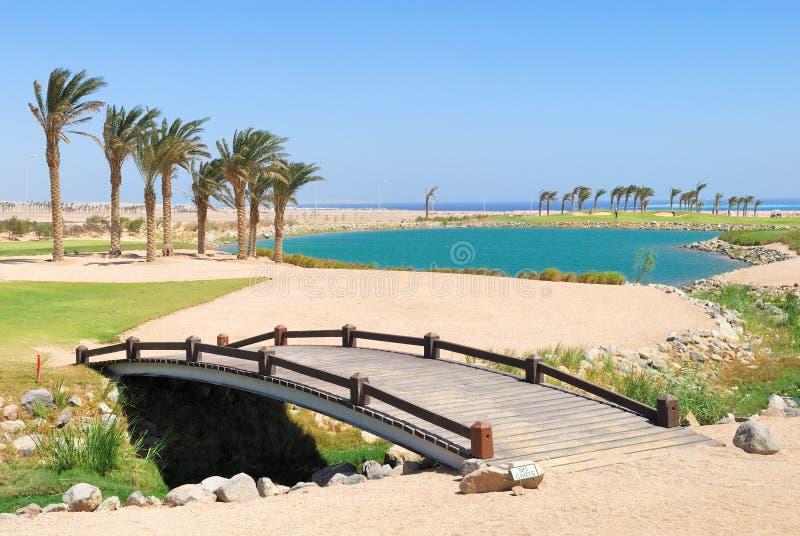 Campo di golf dell'Egitto fotografia stock libera da diritti