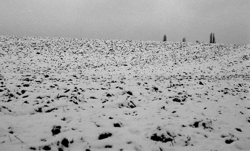 Campo di inverno immagini stock