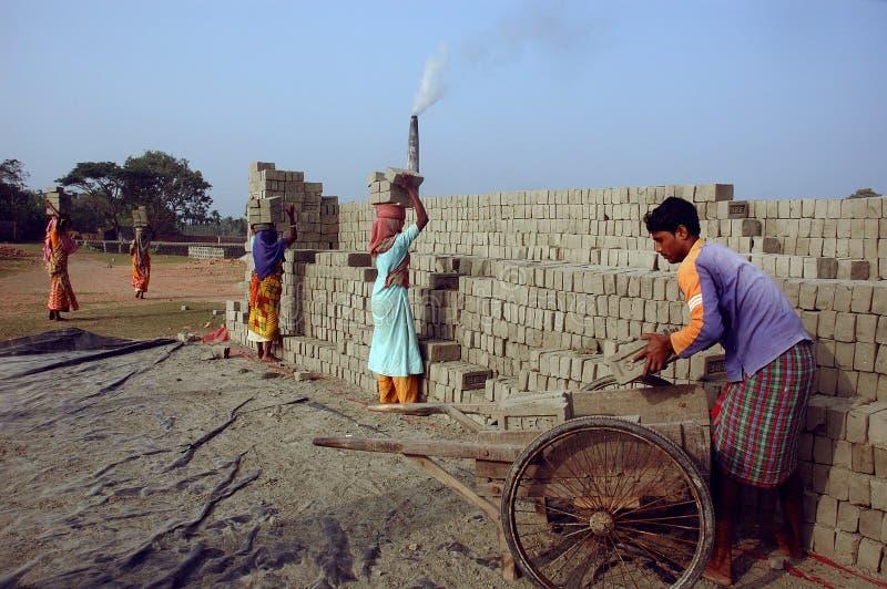 Campo di mattone in Bengala-India ad ovest immagini stock libere da diritti