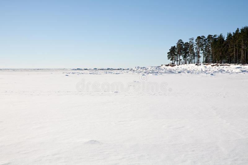 Campo di neve fotografie stock