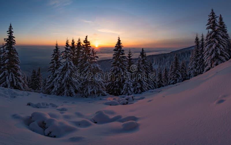 Campo di neve di tramonto di inverno sopra la montagna con i pini gelidi sui precedenti della foresta e delle colline di taiga so fotografia stock