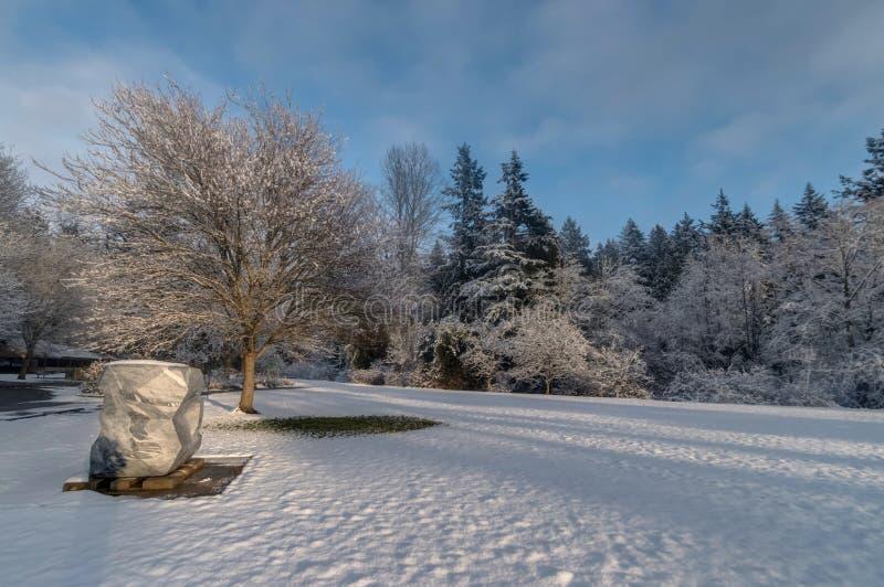 Campo di Snowy immagini stock libere da diritti