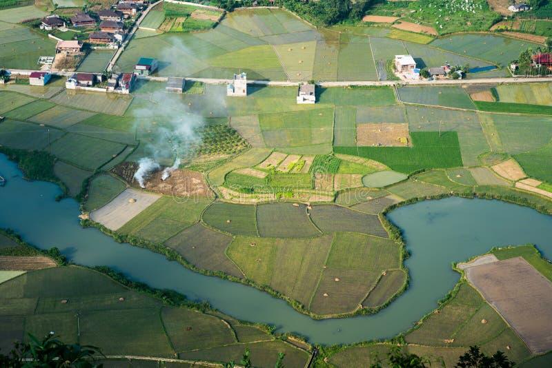 Campo do arroz no vale de Bac Son em Vietname foto de stock royalty free