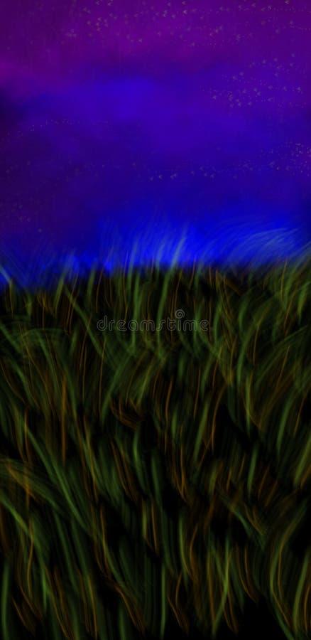 Campo do condado na noite ilustração do vetor