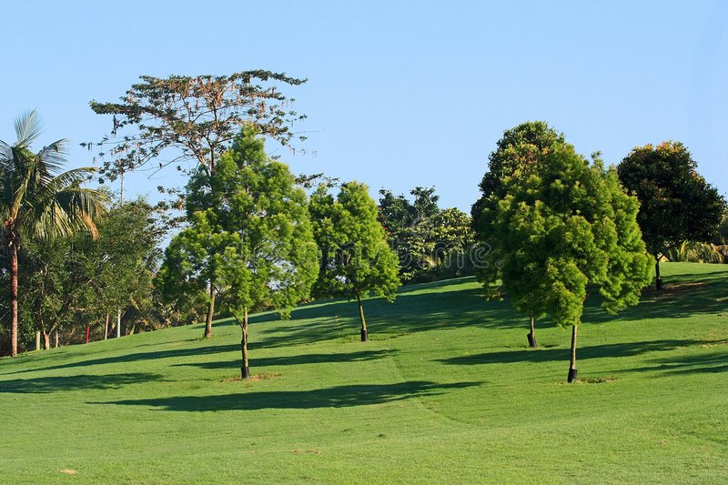 Campo do golfe fotografia de stock royalty free