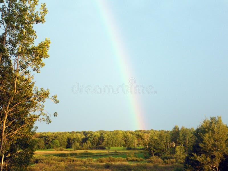 Campo do país com arco-íris imagens de stock